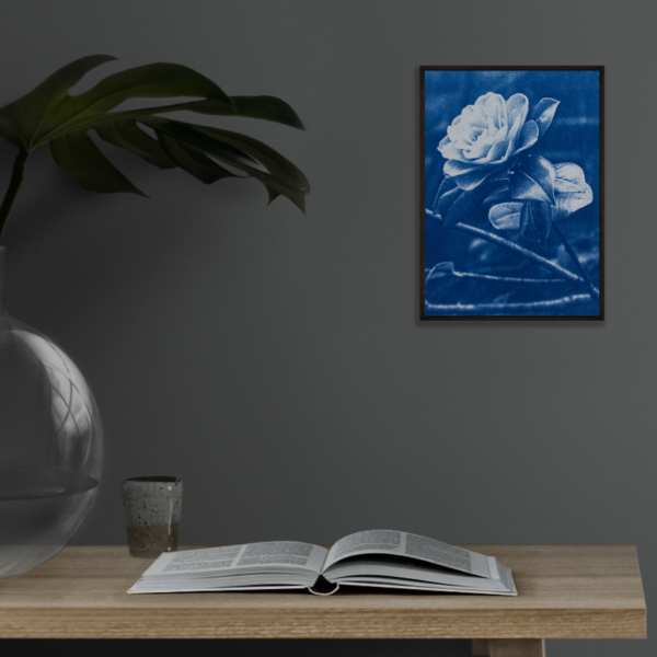 """7x5"""" photography print of a rose-like, camellia flower, in blue monotone."""