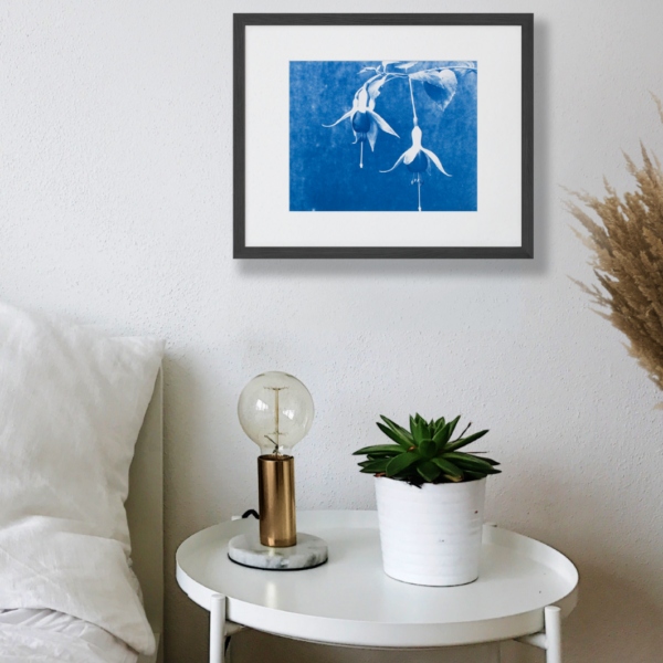 """10x8"""" cyanotype image of two fuchsia flowers against a mottled background, in blue monotone"""