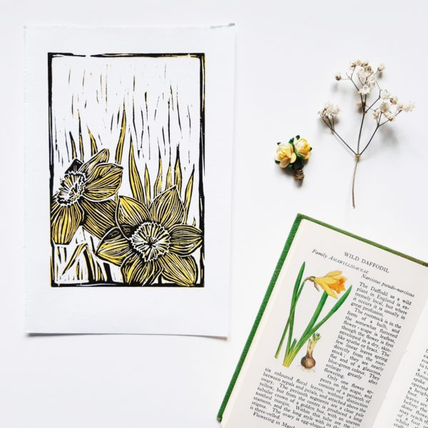Handprinted linoprint of Daffodils, laid out with flowers and daffodil entry in Observers Book of Wildflowers. Reduction linocut in yellow and black on white paper.
