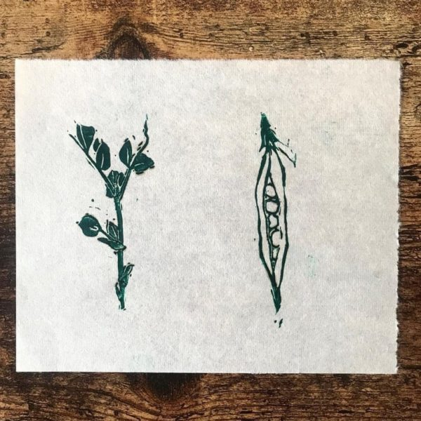 Handprinted linoprint pea shoot and pea pod in green ink on Japanese washi paper, on a wooden background.